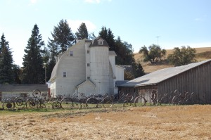 Dahmen Barn with Wagon Wheel Fence