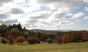 View of the Arboretum from Nez Perce Drive